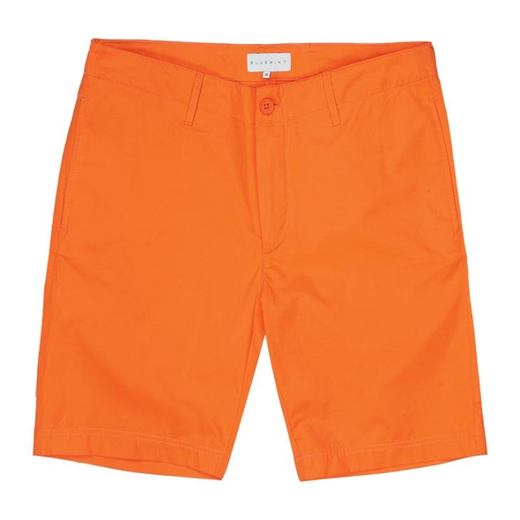 Bluemint Shorts